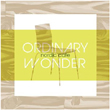 Ordinary Wonder: Nordic Cafe: Various artists